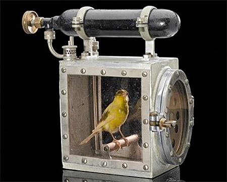 Canary in a special cage for coal mines
