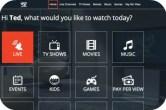 What is Rabbit TV