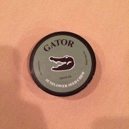 Gator Sunflower Seed Chew – Regular