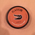 Gator Sunflower Seed Chew – Barbecue
