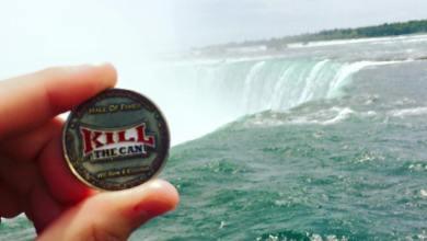 Chewie - Niagara Falls