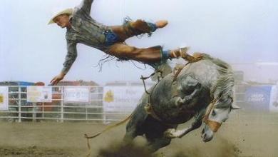 Photo of Cowboy Quit