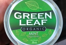 Photo of Green Leaf Organic Mint Pouches Review