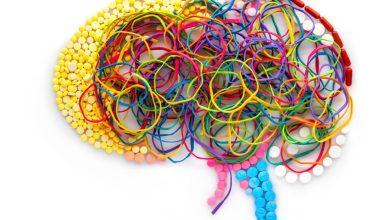 Addict Brain