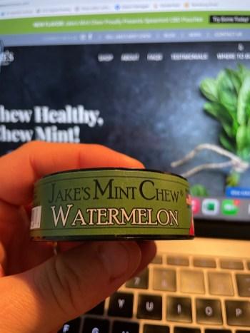 Jake's Mint Chew Watermelon Pouches 3
