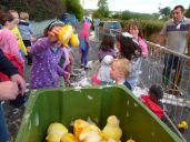 ducks2011_049