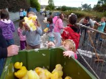 ducks2011_051