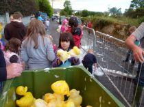 ducks2011_052