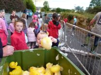 ducks2011_053