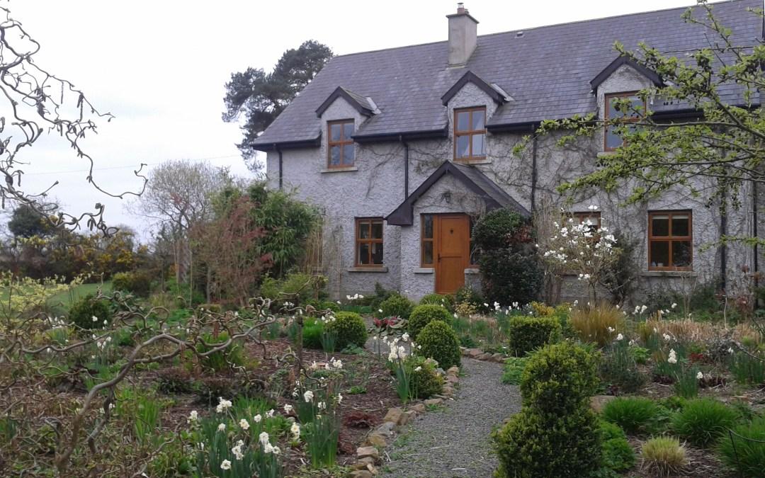 Kilmurry Nursery, garden