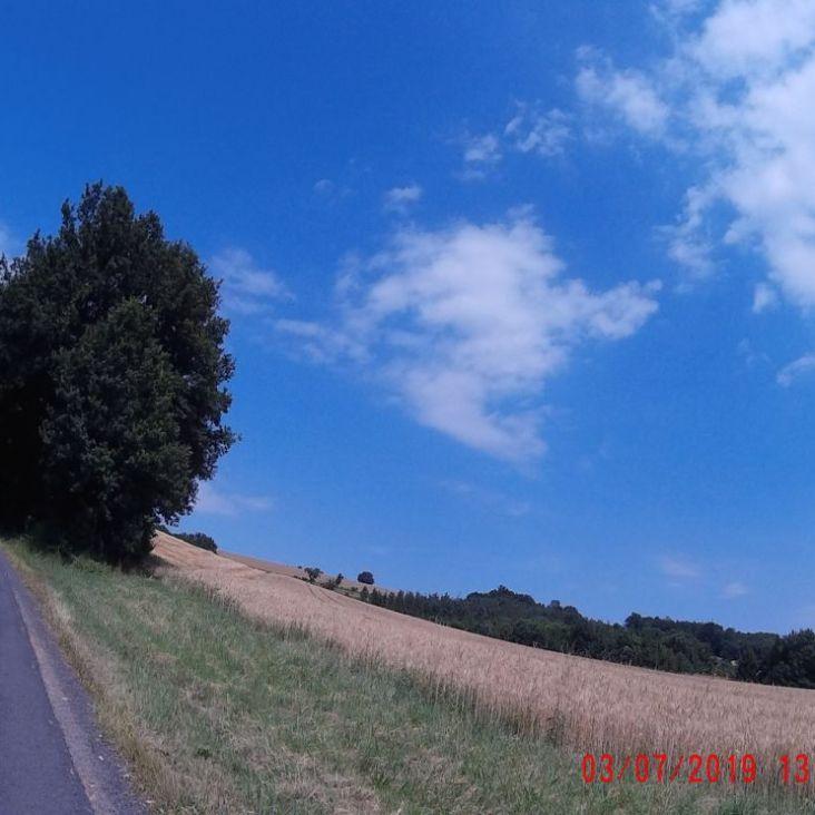 zwischen Oberpetersdorf und Sieggraben