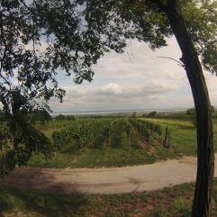 Mörbisch, Blick vom Panoramaplatzl Richtung See
