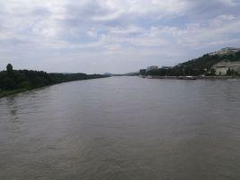 viel Wasser in der Donau