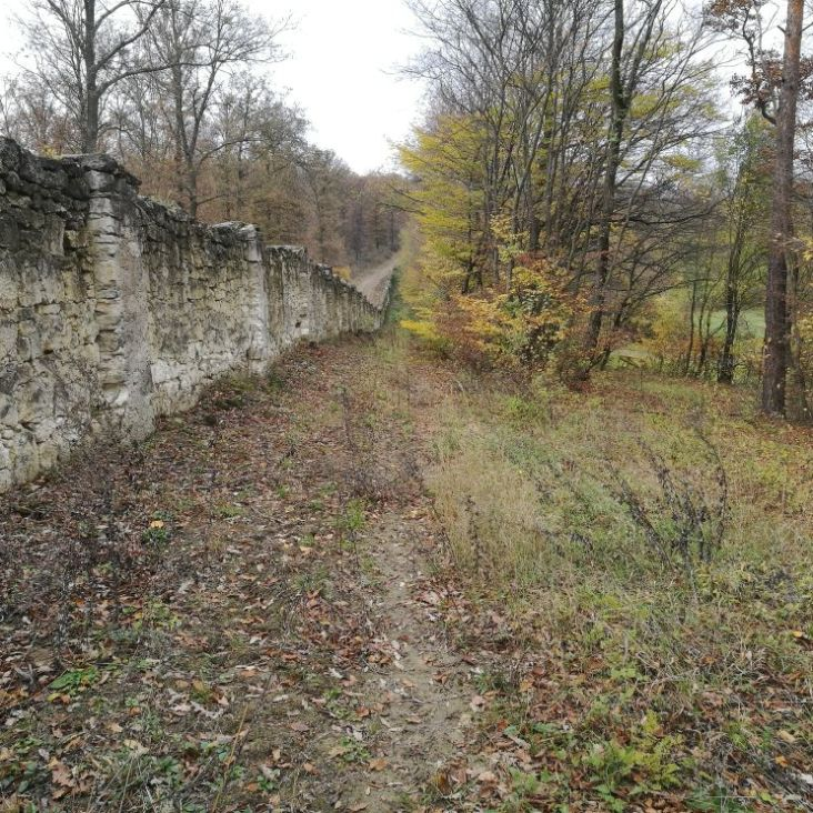 an der Tiergartenmauer