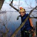 Tim Schroeder Arbeiten als subunternehmer für Astwerk Hamburg