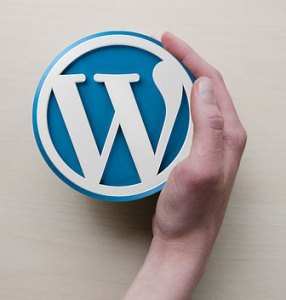 webmaster-wordpress-liege