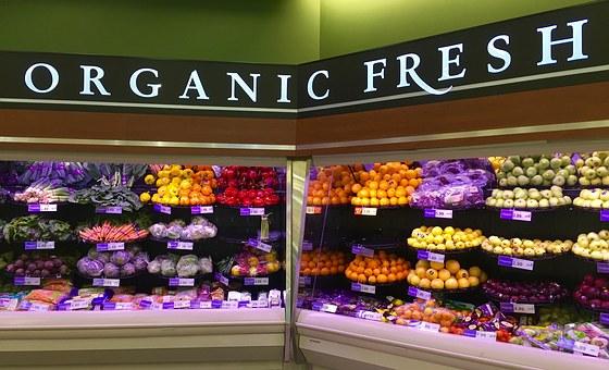 organic-1341558__340