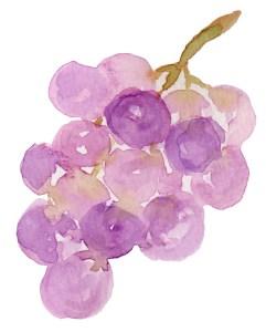 SuperFruit-grape