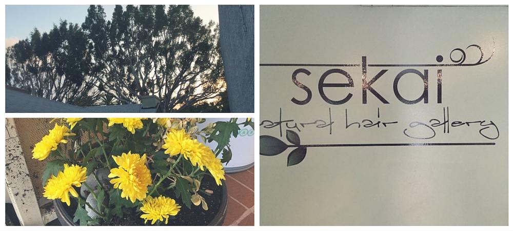 Sekai-Natural-Hair