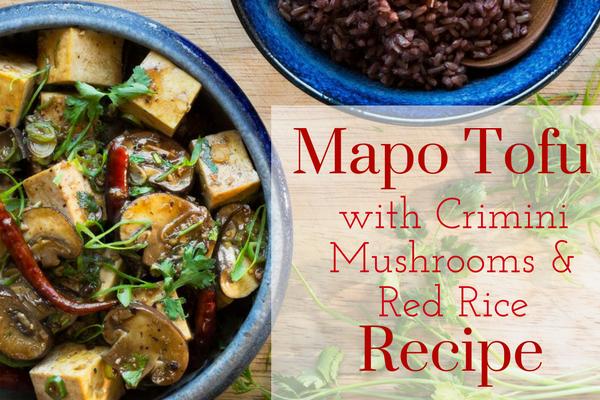 mapo-tofu-blue