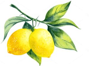 Natural ingredients - Lemon