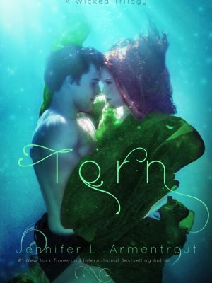 Blog Tour, Review & Teasers: Torn (A Wicked Trilogy #2) by Jennifer L. Armentrout