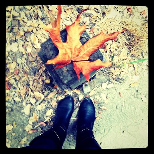 boots and autumn leaf