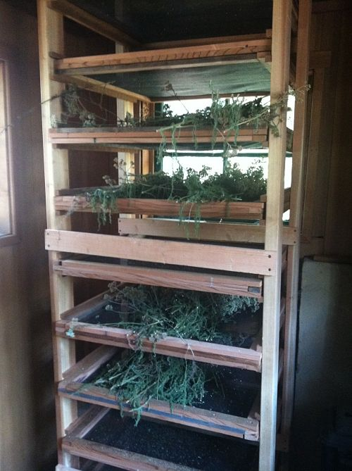 benziger family winery biodynamic dried herbs