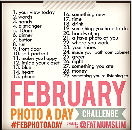 feb photo a day twitter and instagram