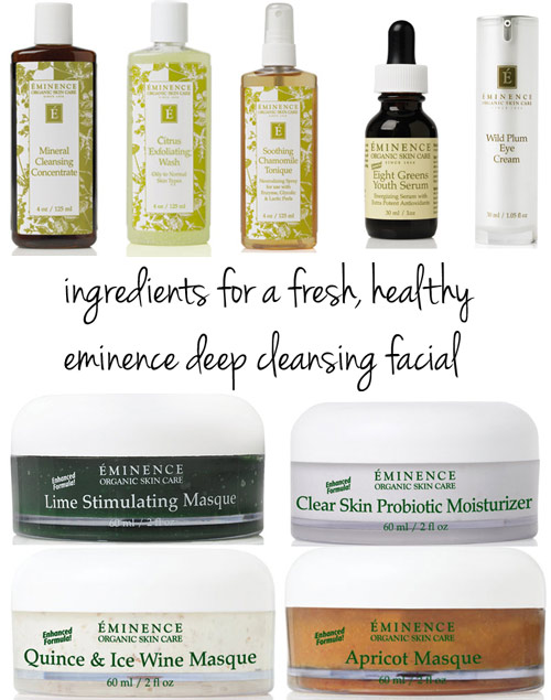 eminence deep cleansing facial spa skincare products