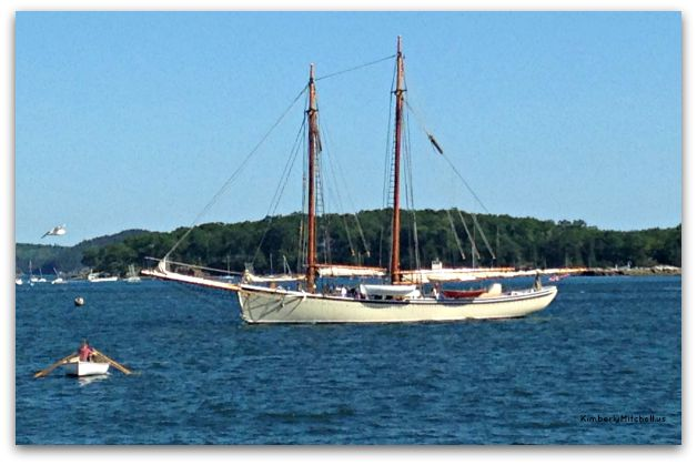 The American Eagle anchored in Castine, Maine.