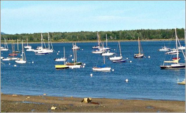 Sailboats at Castine - Ships Passing - kimberlymitchell.us
