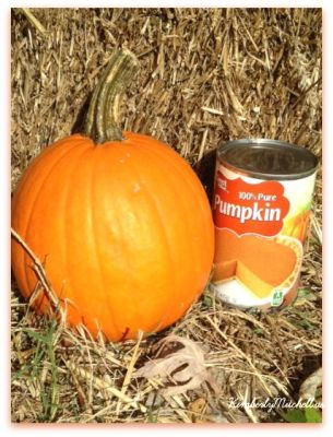 2KindsofPumpkin - Pumpkin Cookies and Project Stir - kimberlymitchell.us