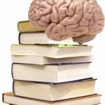 Homework and the Brain
