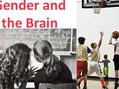 Gender and the Brain