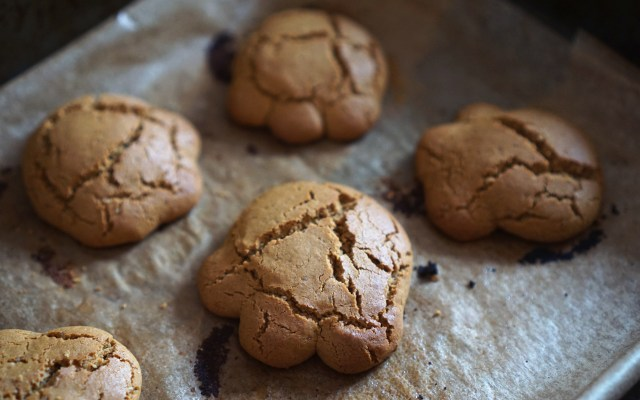 Gluten Free Bear Paws   Soft Treacle Cookies