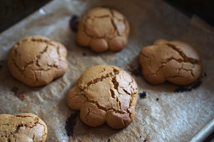 Gluten Free Bear Paws | Soft Treacle Cookies