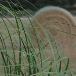 Hay bales are part of the scenery.