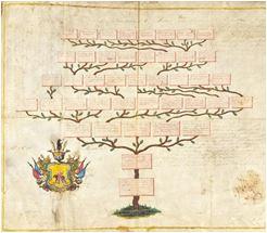 Jak zrobić drzewo genealogiczne - poradnik