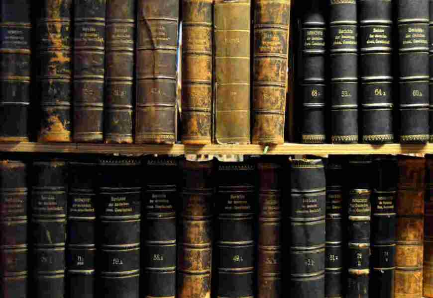 Jak stworzyć drzewo genealogiczne rodziny – wyszukiwarki