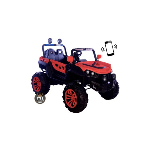 BUGGY ATAA RODEO 4X4