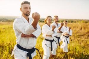 Mejores Karateguis para Adultos 2020