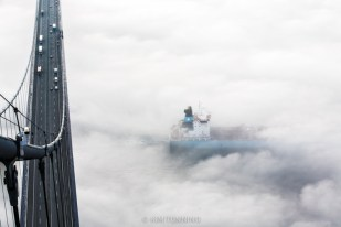 Maersk below bridge