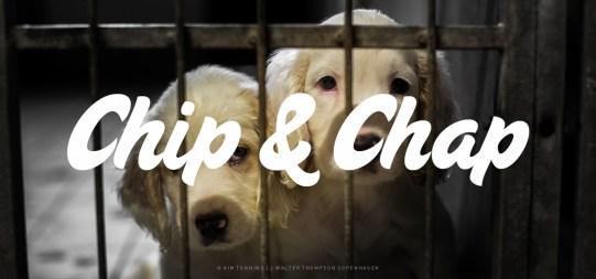 Chip&Chap_Galleri