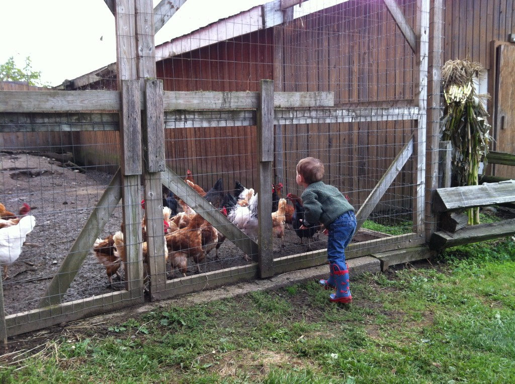 Blowing Kisses to the Chickens