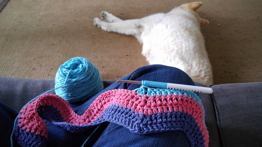 Beginnings of a crocheted ripple blanket.