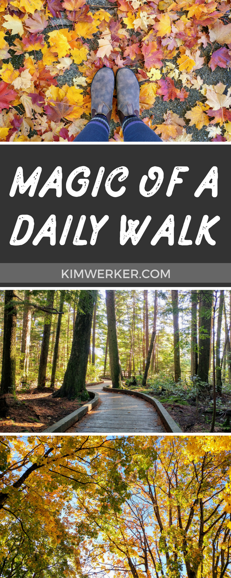 A Walk Every Day
