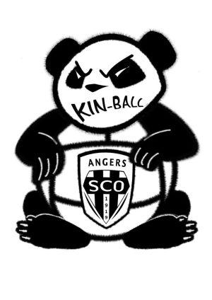 SCO Kin-Ball Angers
