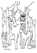 Ausmalbild Einhorn Fabelwesen Einhrner Unicorn