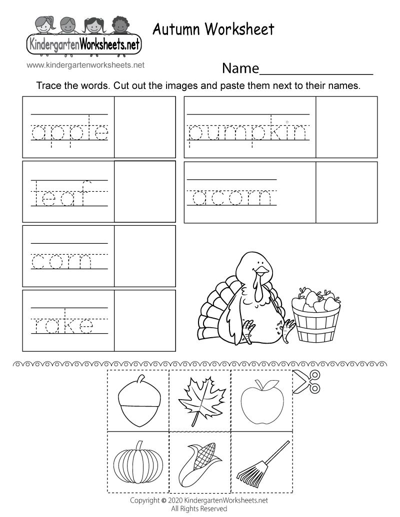 medium resolution of Autumn Activity Worksheet for Kindergarten - Free Printable